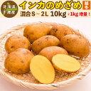 インカのめざめ 越冬 11kg(10kg+1kg増量)S〜2Lサイズ混合 北海道 千歳産 ジャガイモ 送料無料 訳あり