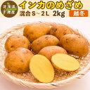 インカのめざめ 越冬 2kg(混合S〜2L)北海道 千歳産 ジャガイモ 送料無料 訳あり