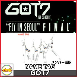GOT7 ネームタグ GOT7 1ST CONCERT FLY IN SEOUL FINAL OFFICIAL GOODS