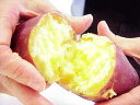 新イモを美味満タンで産地直送!金時いもを1kg単位で好きなだけ入札してください!1kg/1円スタ...
