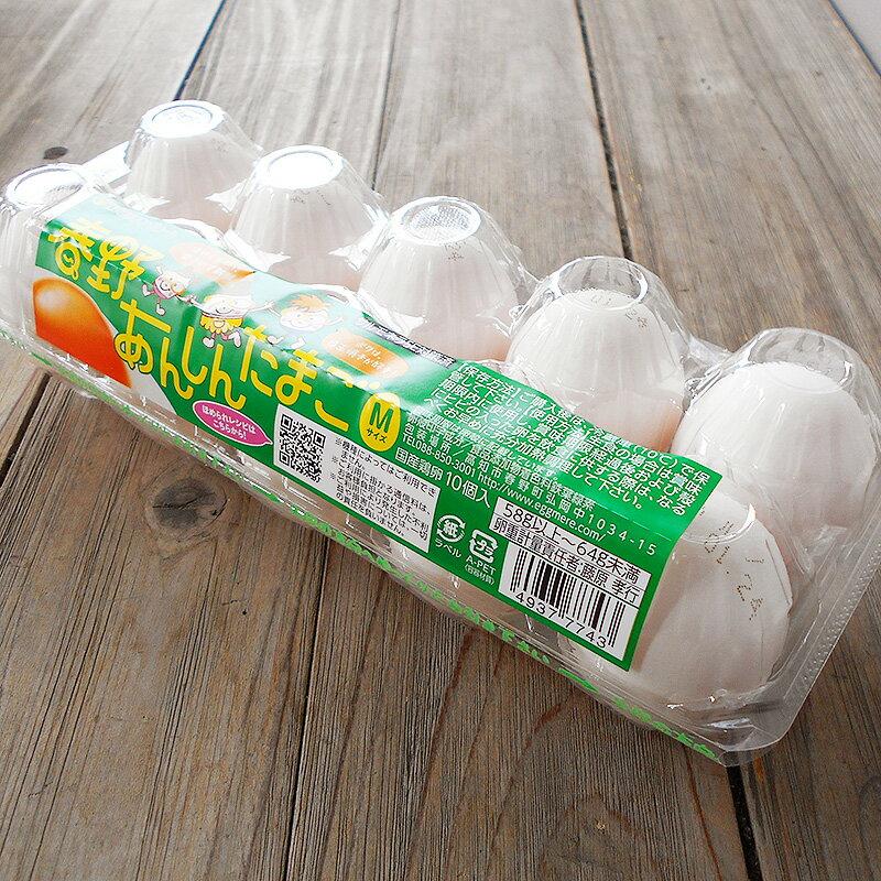 卵 たまご 10玉セット 高知産 エッグメール ...の商品画像