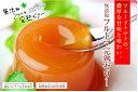 糖度8度以上!高知・池さんちのフルーツトマトでつくりました。★高知特産!青柳の「無添加フル...