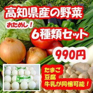 ※園芸やさい王国・南国土佐から、とれたて野菜6種類セットをお届けします【たまご・とうふ・牛...
