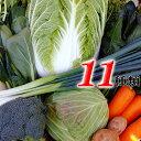とれたて野菜 11種類セット詰め合わせ 高知産 レシピつき