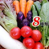 ★送料無料「とれたて野菜」8種類セット高知産レシピ付き★[Qv10]