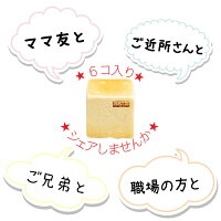 シュシュズベーカリーシュシュの生食パン1セット6コ入(0.5斤(9.5cm×9.5cm)×6コ)冷凍食パン生食パンクール便発送ギフト贈り物プレゼントお土産お取り寄せシェア