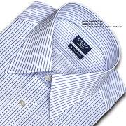 アポロコット レギュラーカラーシャツ・ブルーストライプ・