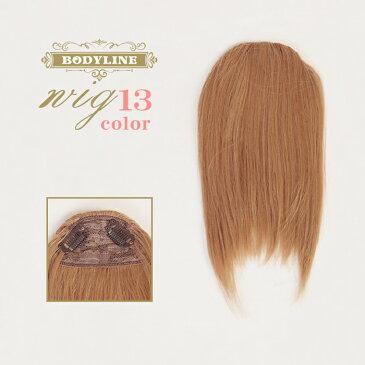 ウイッグ 前髪ポイントウィッグ エクステ 耐熱 wig カラー展開 コスプレ こすぷれ w135 衣装