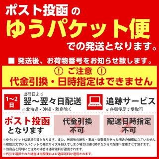 【メール便送料無料】メニューブックエコ4ページA4DAG☆【おしゃれ】【業務用】