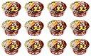 【12食セット】サンポー食品株式会社 ごぼう天うどん ごぼ天うどん 93g 4901773015061 地域限定 九州限定 ご当地うどん 12個セット