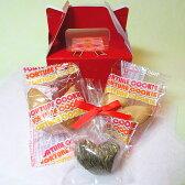 フォーチュンクッキー fortunecookies 2個 工芸茶1個 セット (レッド ボックス)【プレゼント お茶 クッキー プチギフト バレンタインデー】