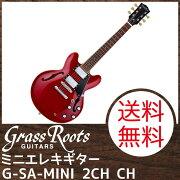 GrassRootsG-SA-MINI2HCH�ߥ˥��쥭������