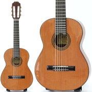 PEPEPS-48ミニギターアウトレット