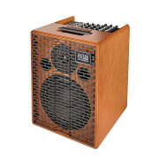 ACUSOneforstrings8アコースティックギターアンプ