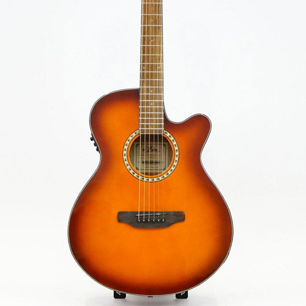ギター, アコースティックギター ARIA TG-1FX LVS