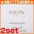 FOEHN AGS-120×2セット Acoustic Guitar Strings 12strings Light 80/20 Bronze 12弦アコースティックギター弦