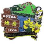 日本百名山 ピンバッジ 2段 ピンズ 焼岳 エイコー コレクションケース入り トレッキング 登山 グッズ 通販 メール便可 シネマコレクション