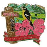 日本百名山 ピンバッジ 1段 ピンズ 九重山 エイコー コレクションケース入り トレッキング 登山 グッズ 通販 メール便可 シネマコレクション