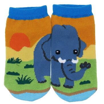 ゾウ 子供用 靴下 キッズぴったんこソックス アニマルフレンズ HNA 13-18cm 動物園 アンクルソックス グッズ シネマコレクション