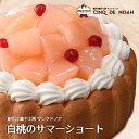 ピーチパラダイス サンクドノア ケーキ 12cm【アントルメセレクション】7月限定 誕生日 ギフト 洋菓子 食べ物 グルメ 高級 焼菓子 内祝い お返し 入学祝い 贈り物 フルーツケーキ バースデーケーキ 父の日