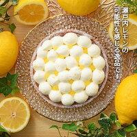 瀬戸内レモンのチーズタルト
