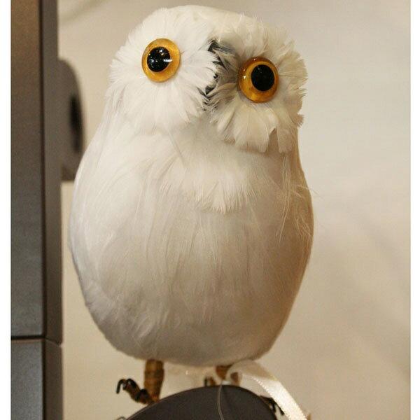 プエブコ PUEBCO ARTIFICIAL BIRDS バードオブジェWhite Owl白フクロウSサイズ正面向き /108070