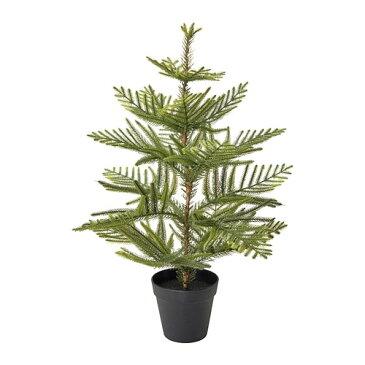IKEA(イケア) FEJKA フェイカ 人工観葉植物 室内/屋外用 ナンヨウスギ クリスマスツリー z90394861
