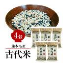 熊本産古代米 4穀 200g×5袋 お得なまとめ買い 赤米 黒米 緑米 発芽玄米 GABA お試し 送料無料 メール便限定 【代引不可】
