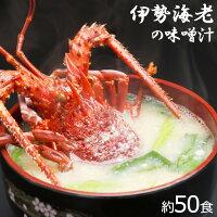 インスタント味噌汁【伊勢海老・約50食】キトサン・コラーゲン・カルシウム・マルチビタミン配合