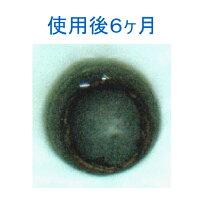 【小便器 尿石除去剤】 トレピカワンT-25A 100個 【業務用 男性トイレ 消臭剤 尿石防止剤】