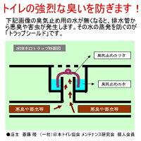 排水口水乾燥・蒸発防止剤トラップシールド1kg2本【送料無料業務用】