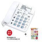(親機と付属品のみ・子機一式無し)パナソニック電話機 電話機 VE-GZ31-W 電話帳機能付き電話機 振り込め詐欺撃退シール付き 迷惑電話対策 VE-GD36と同一規格品