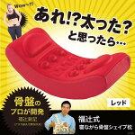 【D.STORE】福辻式寝ながら骨盤シェイプ枕