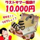 先着40個限定【夏のキャリーバッグ入り福袋!】アルコペディコ...