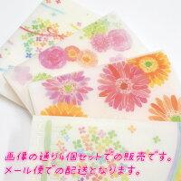 お買い得カードホルダー4個セットnaminamiシリーズお1000円ポッキリお得クローズピンClothesPinメール便OK