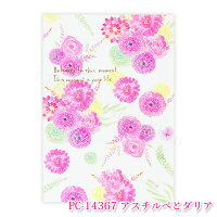 naminamiシリーズ・ナミナミポストカードイラスト・はがき・PostCard・葉書・水彩タッチ・おしゃれ・大人クローズピン