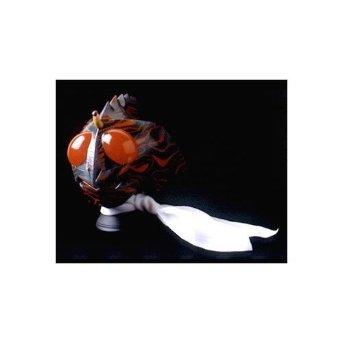 RMW 仮面ライダーアマゾン 1/2マスク メディコム・トイ:クロソイド屋