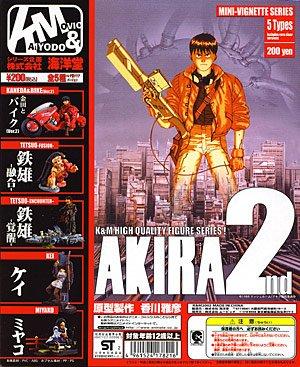 コレクション, フィギュア KM AKIRA22nd 5