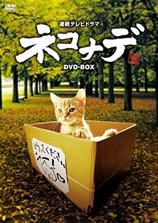 連続テレビドラマ ネコナデ DVD-BOX(4枚組) 小木茂光 新品