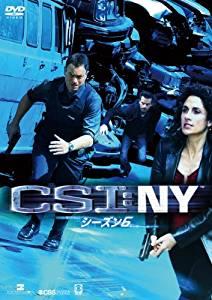 CSI:NY シーズン6 コンプリートBOX-1 [DVD] ゲーリー・シニーズ マルチレンズクリーナー付き 新品