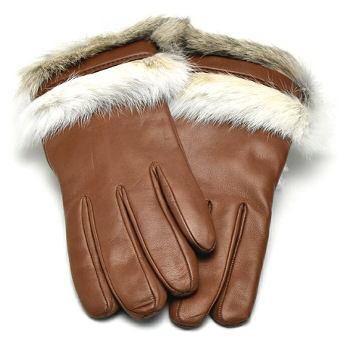手袋・アームウォーマー, レディース手袋  ALPO nappa 1529 003cognac