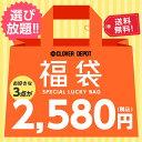 【送料無料】選べる 福袋 対象費商品から3点 2019 レデ...