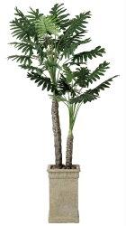 《アートグリーン》《人工観葉植物》光触媒光の楽園【送料無料】《アートグリーン》《人工観葉植物》光触媒光の楽園セロ−ム2.0【RCP】【送料無料】《アートグリーン》《人工観葉植物》光触媒光の楽園セロ−ム2.0【RCP】