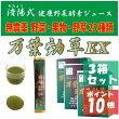 済陽式健康野草ジュース万葉効草EX
