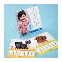 ◇(まとめ)サンワサプライ インクジェット手作りカレンダーキット(卓上用) JP-CALSET25N【×5セット】※他の商品と同梱不可