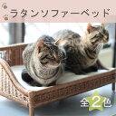 ペット用ラタンソファーベッド/猫 ペット おしゃれ かわいい ラタン製 猫用ベッド 天然素材