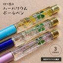 四つ葉のハーバリウムボールペン 1本 日本製 シロツメクサ