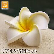 プルメリア トロピカル アジアン インテリア フラワー フランジパニ デザイン ハワイアン