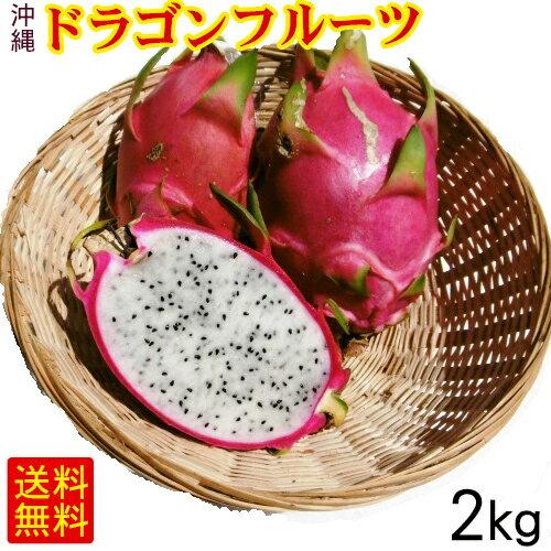 沖縄産ドラゴンフルーツ(白)4玉~8玉(約2kg)ご自宅用 <送料無料>