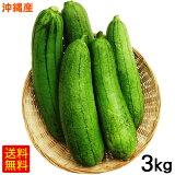 沖縄産へちま(ナーベーラー)3kg 【送料無料】 /沖縄野菜 食用ヘチマ